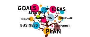 organized planning for success
